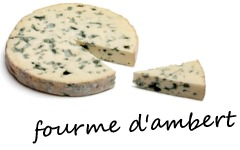 fourme d'Ambert - ja6